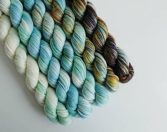 "100% Merino 4-ply Mini Gradient Kit ""Familiar"""