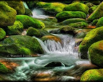 Mossy Stream E219