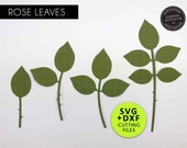 Rose Leaf SVG Template, Paper flower leaves, Leaf template, Leaf svg, Paper Leaf SVG, Leaves, leaves for cricut, leaves for silhouette