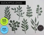 7x Eucalyptus Leaf SVG DXF PDF Template, Leaf svg, Paper flower leaves, Leaf template, Floral svg, Plant svg, Paper Leaf svg, svg for cricut