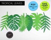 Tropical Leaf Template, SVG, PDF, DXF, Tropical Leaf svg, Tropical Leaf pdf, Paper flower leaves, Paper Leaf svg, leaves for cricut, pl-07