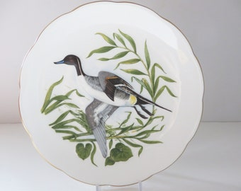 Crown Staffordshire vintage  Peter Scott wild life 1970's plate