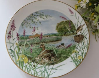 Royal Worcester vintage 1979  July collectible plate