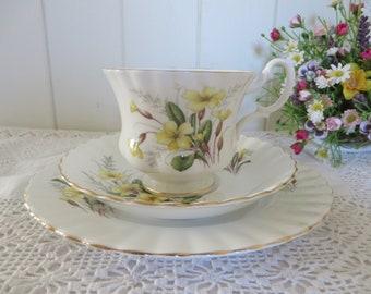 Richmond vintage 1970's Primrose pattern tea cup and saucer