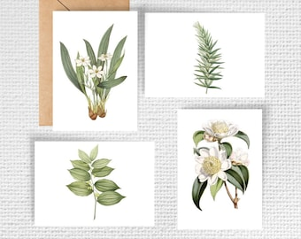 Vintage Botanical Note Cards - Set of 8
