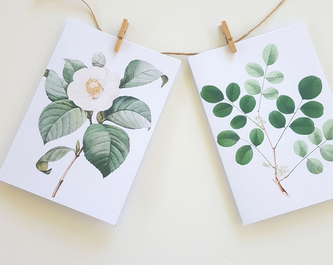 Botanical Floral Note Cards