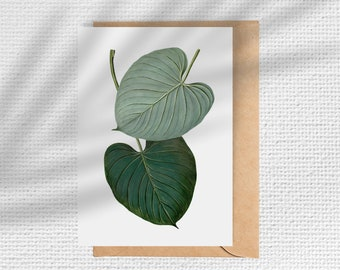 Vintage Botanical Note Cards - Set of 6
