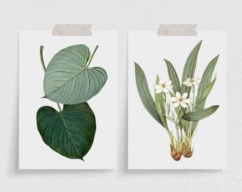 Mini Art Prints