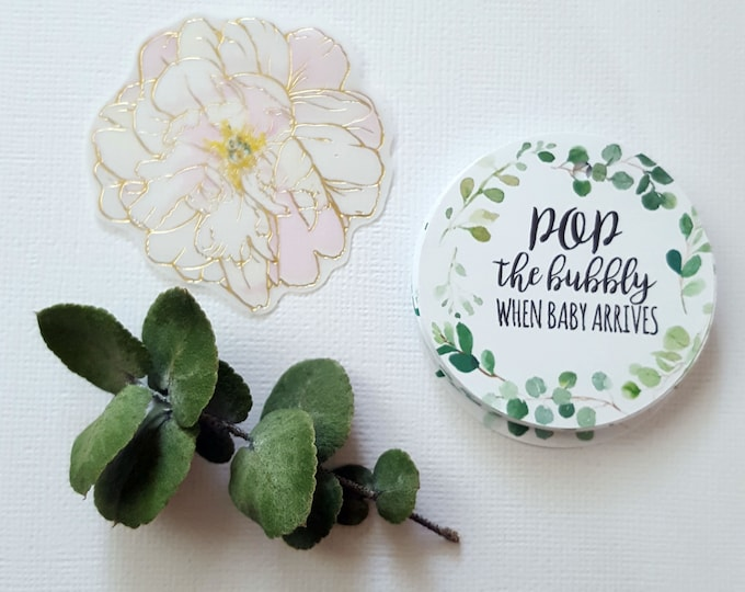 Eucalyptus Greenery Wreath Pop the bubbly Baby Shower Favour Tags (20)