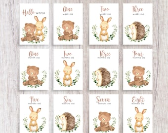 Woodland Animal Baby Milestone Cards   Printed