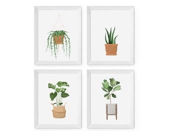 Set of 4 House Plant prints