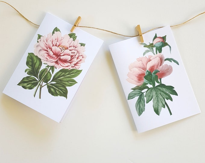 Vintage Peony Note Cards - (4)