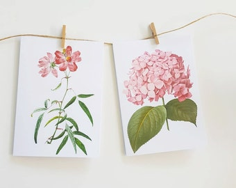 Botanical Floral Note Cards set