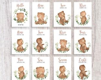 Woodland Bear Baby Milestone Cards | Printed