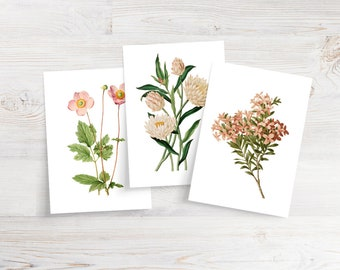 Set of 6 Apricot Floral Notecards