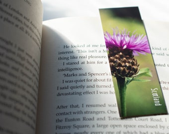 Thistle Magnetic Bookmarks   Nature Photography
