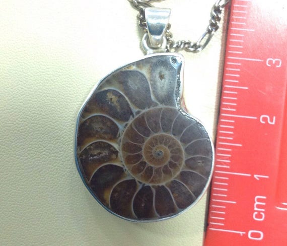Vintage Solid silver Ammonite fossil pendant on 18 inch 925 sterling silver chain