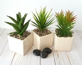 Faux Spiky Artificial Succulents in Ivory Planters, SET OF THREE Fake Succulent Arrangement, Spring Greenery, Cactus Gift, Kitchen Decor