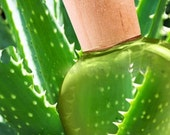 ALOE VERA Gel-100 Pure Organic -The BEST Post-Microdermabrasion Moisturizer- Acne Eczema Psoriasis Blemishes -AntiAging