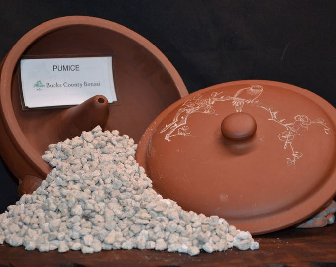 Pumice substrate - 1 gallon