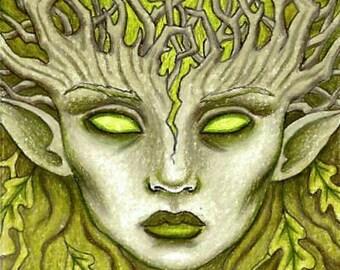 ACEO ORIGINAL 'Oak Tree Spirit', dryad art, wood spirit, green lady, forest creature chlorophyll life energy, man Ooak ATC Luminance pencils