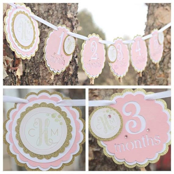 PINK AND GOLD 1st Birthday Party Decorations 12 Month Photo Memory Banner Year Monthly Girl Monogram