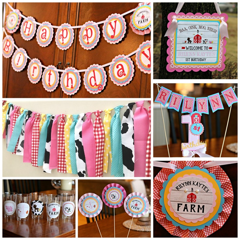 Girl Farm Barnyard Birthday Farm Party Decorations Baby Etsy