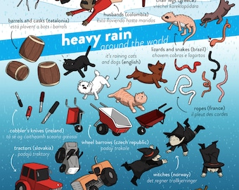 Raining Cats and Dogs in Other Lanaguges (A3 poster)