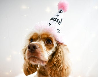 Personalized Dog Birthday Hat, Party Hat for Dog, Puppy Party, Personalized Dog Party Hat