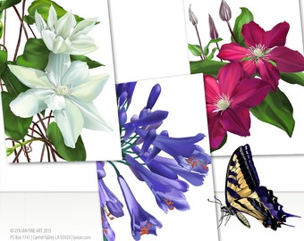 Floral Greeting Cards | Set of 3 | 5.5 x 8.5