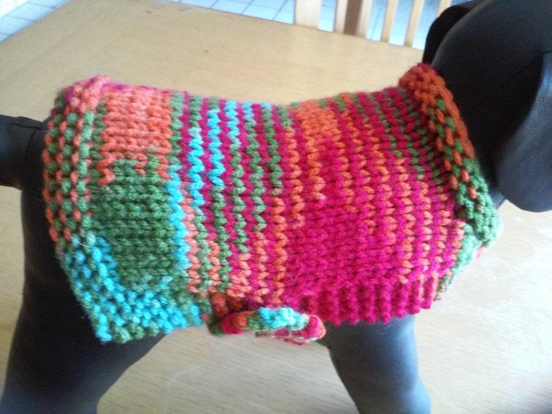 X Small Dog Sweater Worsted Weight Hand Knit XS Dog Coat  Dog Jacket  XS Dog Apparel XS Dog Attire Dog Clothing  Dog Wear Dog Outfit
