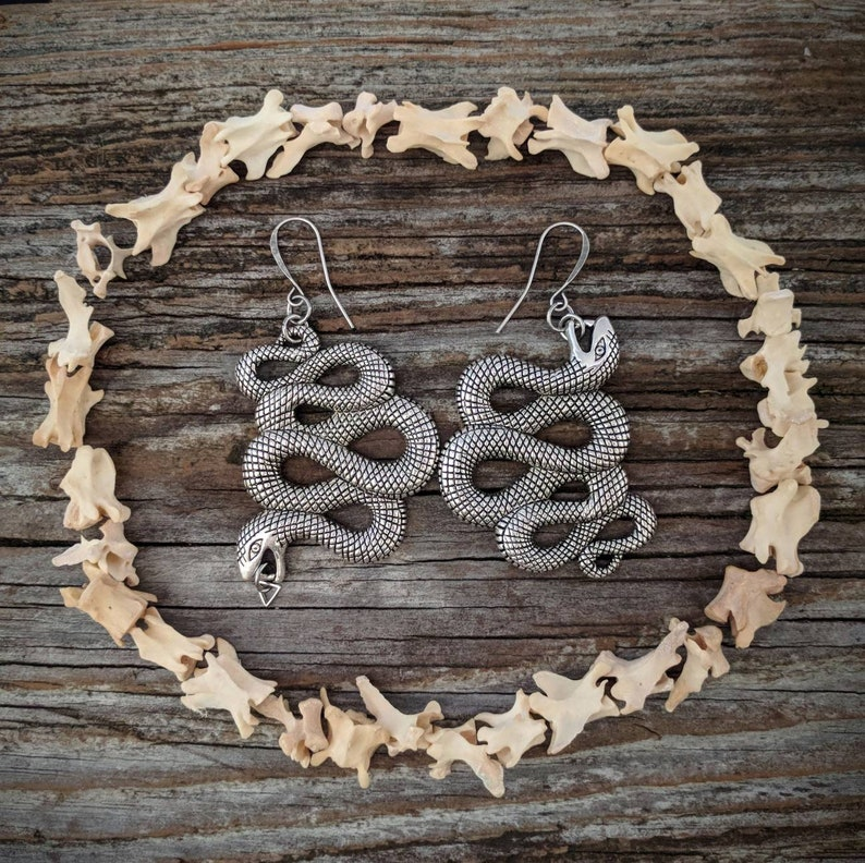 Snake  Earrings  Silver  Goth  Jewelry  Witchy  Oddities image 0