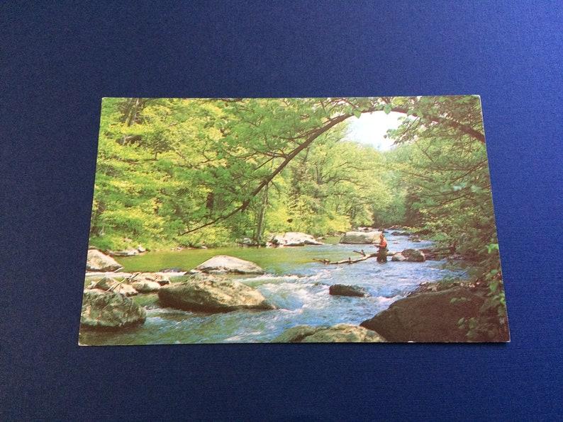 Fly Fishing Raritan River New Jersey Vintage 1962 Gorge in Hunterdon County Postcard