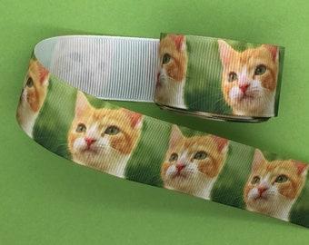 25mm Wide Kittens Ribbon