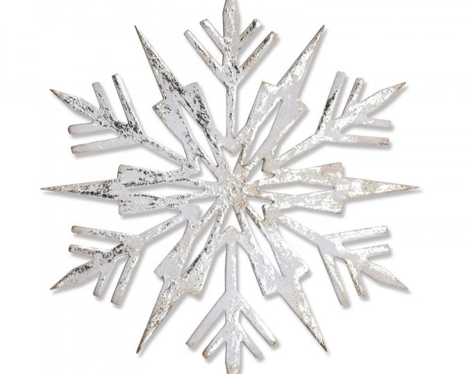 New! Sizzix Tim Holtz Bigz Die - Ice Flake 663109