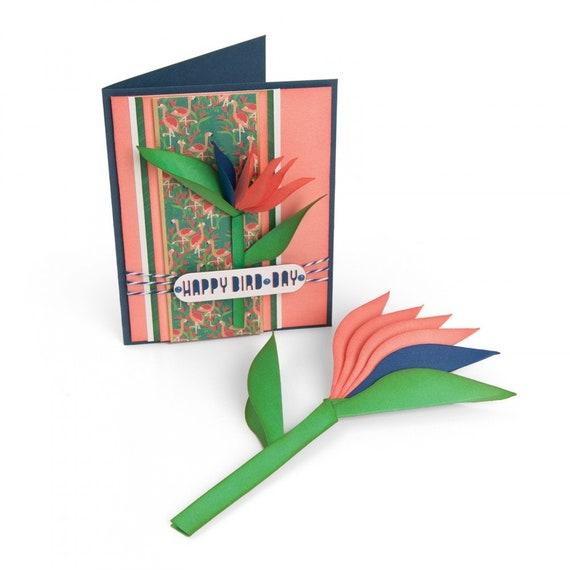 New! Sizzix Framelits Die Set 6PK - Bird of Paradise, 2-D & 3-D by Lynda Kanase 662782