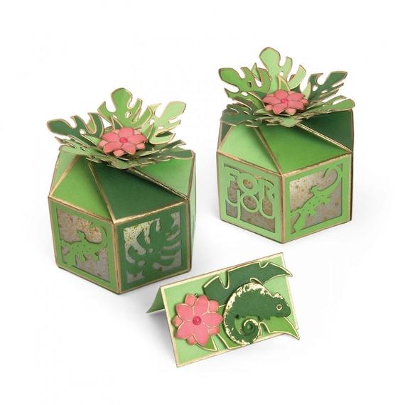 New! Sizzix Thinlits Die Set 10PK - Box, Tropicool Twist by Lynda Kanase 662784