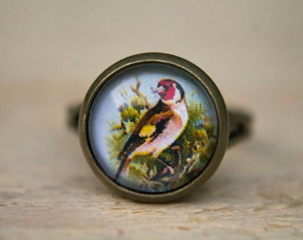 Goldfinch Ring, Bird Ring, Bird Jewellery, Glass Dome Ring, Adjustable Ring, Statement Ring, Simple Ring, Gifts for Her, Everyday Jewellery