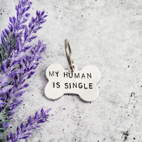 My Human is Single Dog Bone Tag
