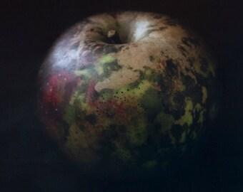 Apple Fine Art 5x7 Photographic Print