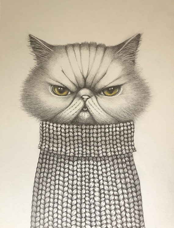 Matou, portrait of an exotic cat dressed in a knitted sweater by Eva Fialka.