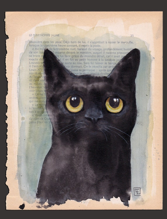 OMBRE , portrait of black cat by eva Fialka