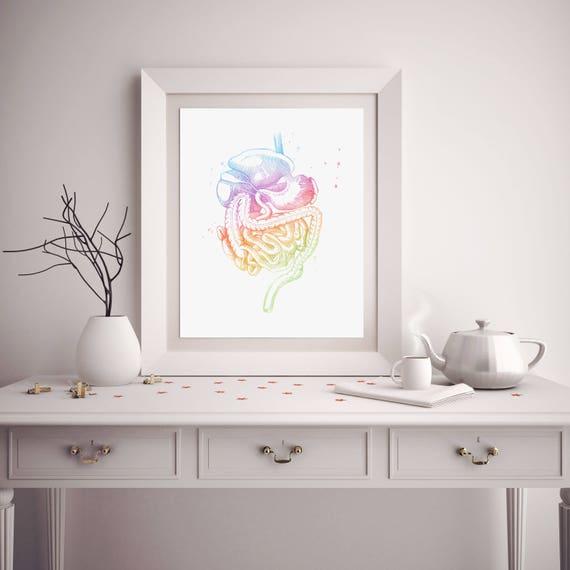 Magen-Darm-Kunst Aquarell Anatomie Dekor GI-Trakt Med   Etsy