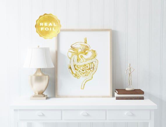 Darm Druck Goldfolie Anatomie Dekor GI-Trakt Med   Etsy