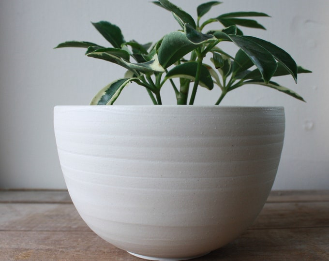 Planter - Plant Pot - Porcelain - Handmade - Ceramics & Pottery