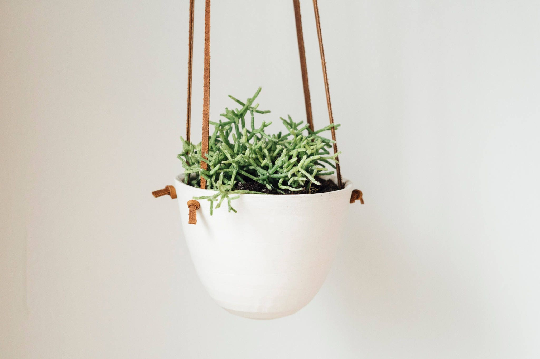 Small hanging planter leather and ceramic brown knotted leather handmade kj pottery