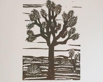 Muddy Brown Green Joshua Tree