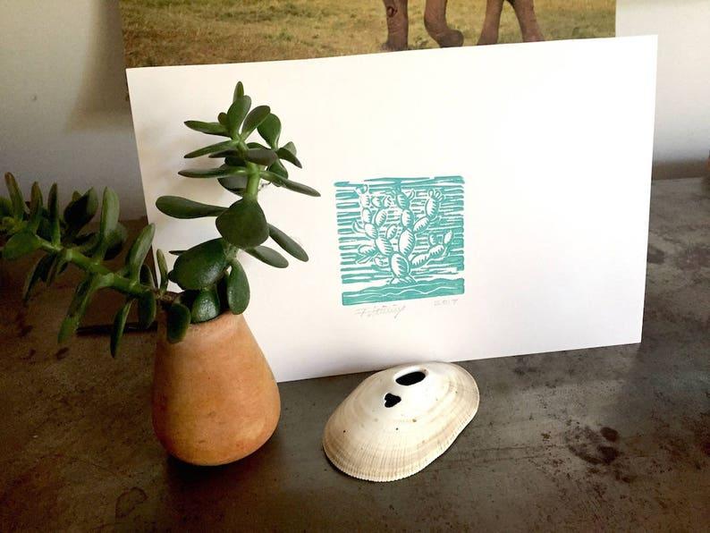 Aqua Blue Green Mini Pear Cactus image 0