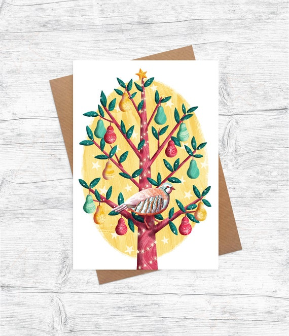 Partridge in a pear tree illustrated christmas card pack etsy image 0 m4hsunfo