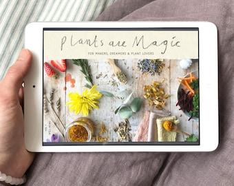 Ebook botanical colour at your fingertips plant volume 1 plants are magic digital magazine botanical creativity emagazine ebook fandeluxe Choice Image